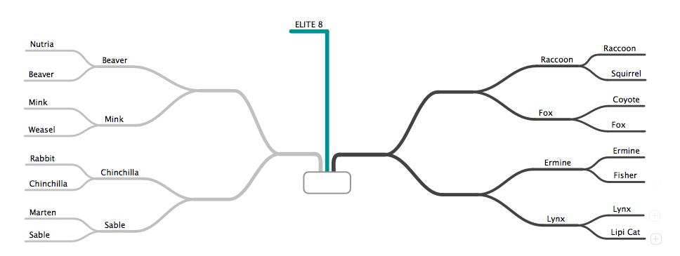 Elite8-1